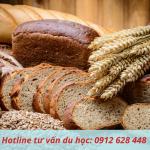 Lý do du học nghề làm bánh tại Đức
