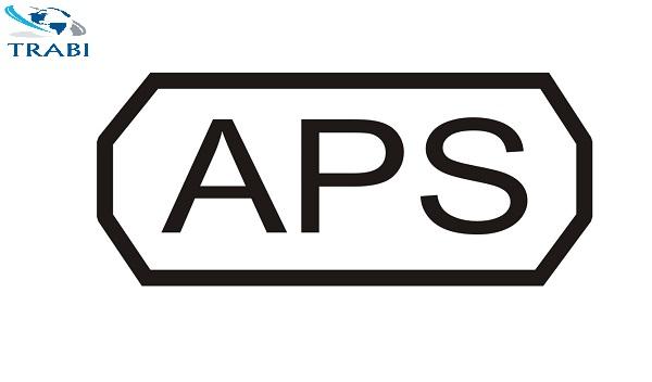 Phỏng vấn APS và thẩm tra APS là gì?
